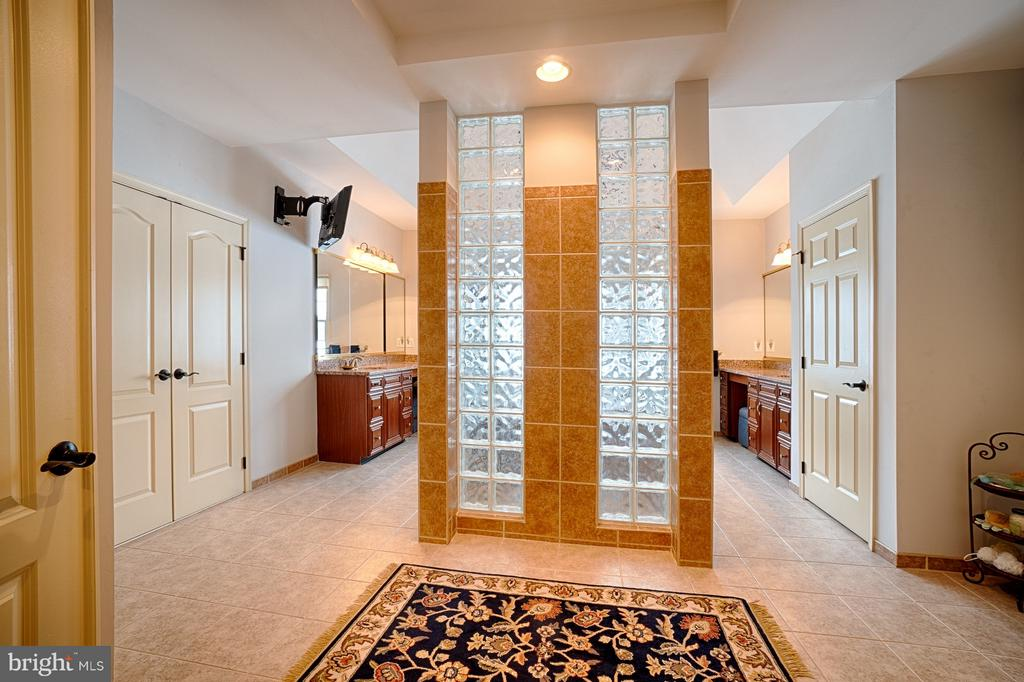 Master Bath with custom shower area - 14786 BANKFIELD DR, WATERFORD