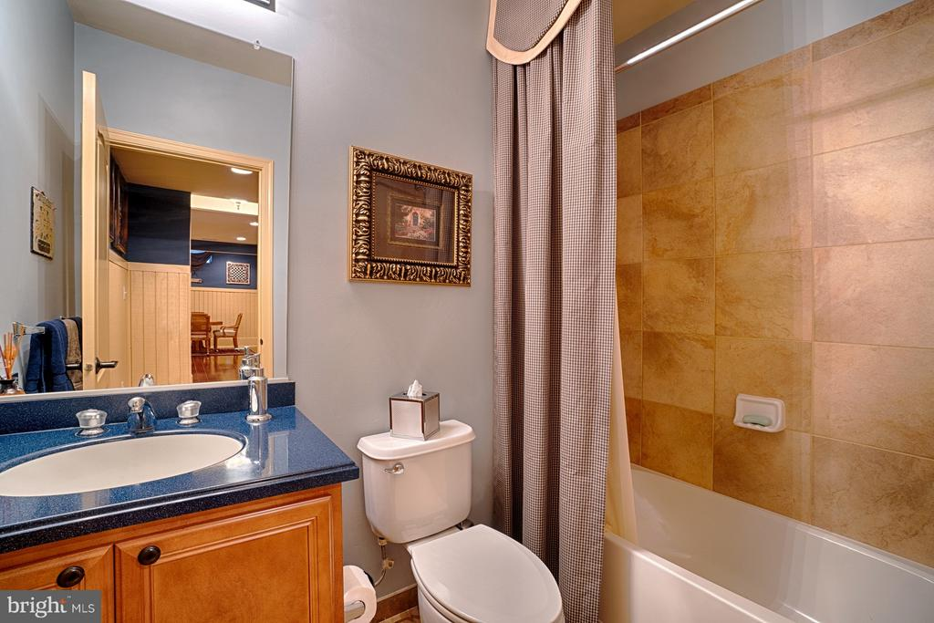 Lowe Level full bath - 14786 BANKFIELD DR, WATERFORD