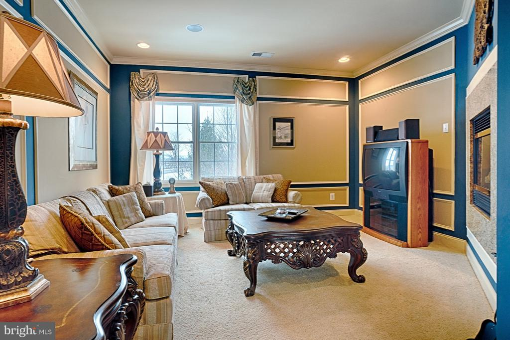 Master Bedroom sitting area with gas fireplace - 14786 BANKFIELD DR, WATERFORD