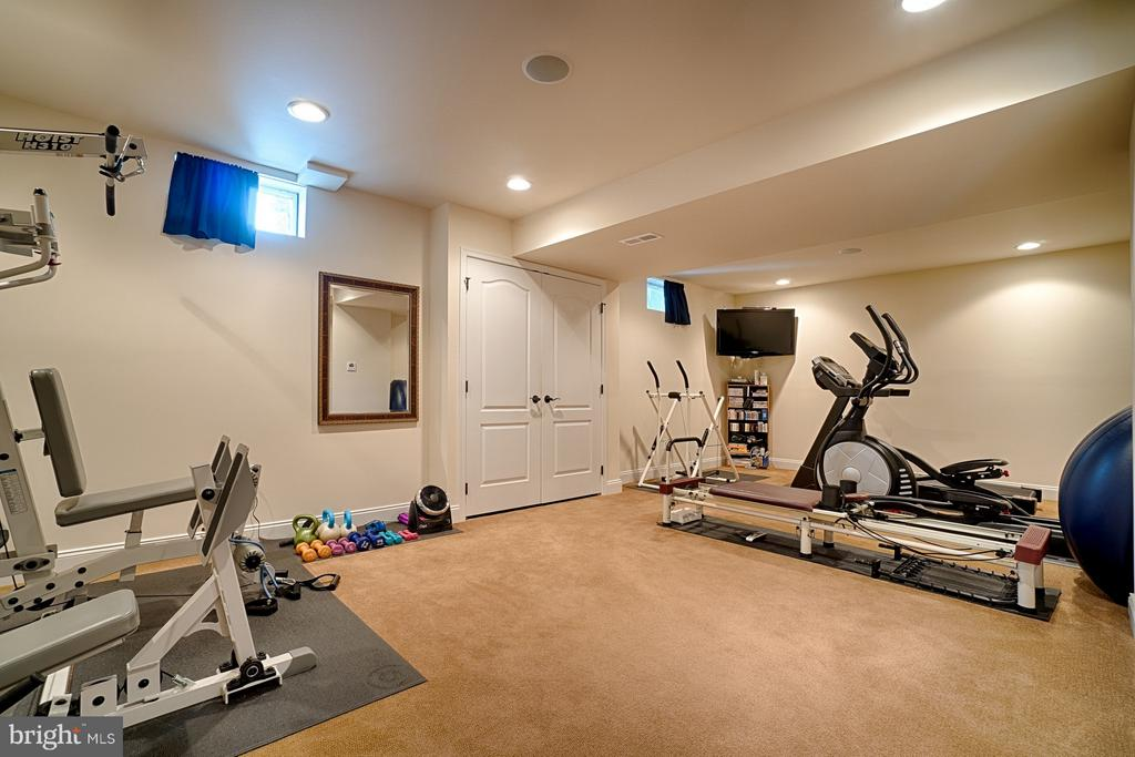 Exercise room - 14786 BANKFIELD DR, WATERFORD