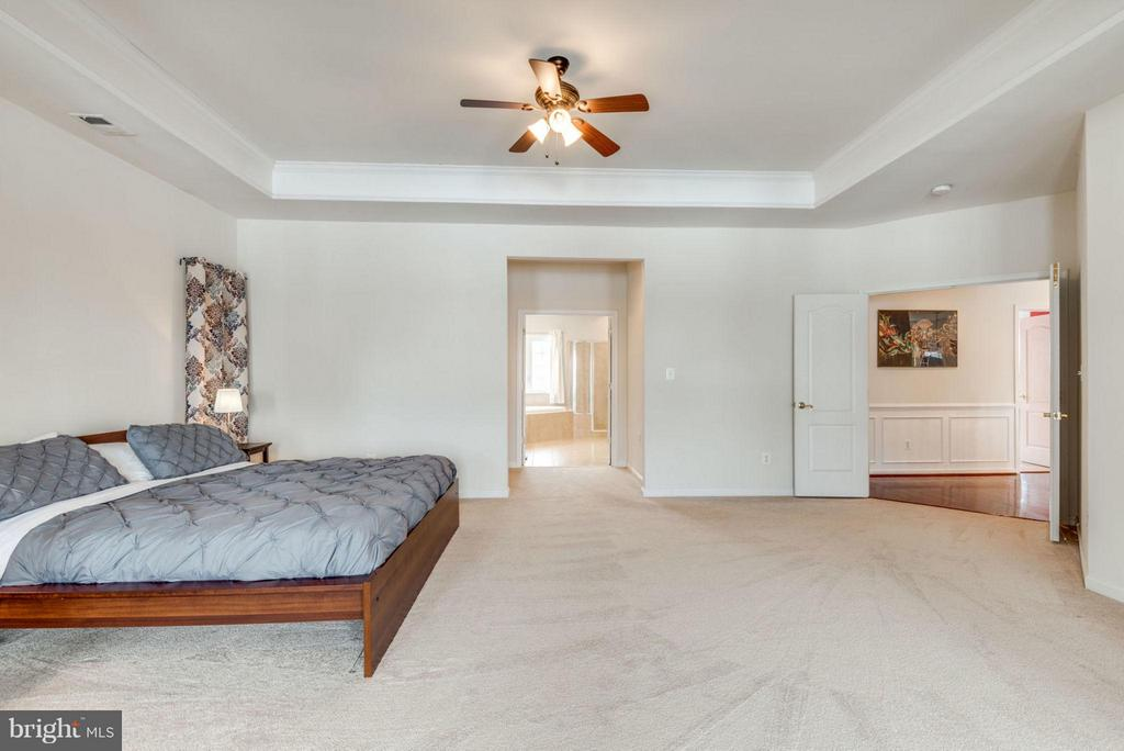 Features tray ceiling and walk-in closets. - 21584 BURNT HICKORY CT, BROADLANDS
