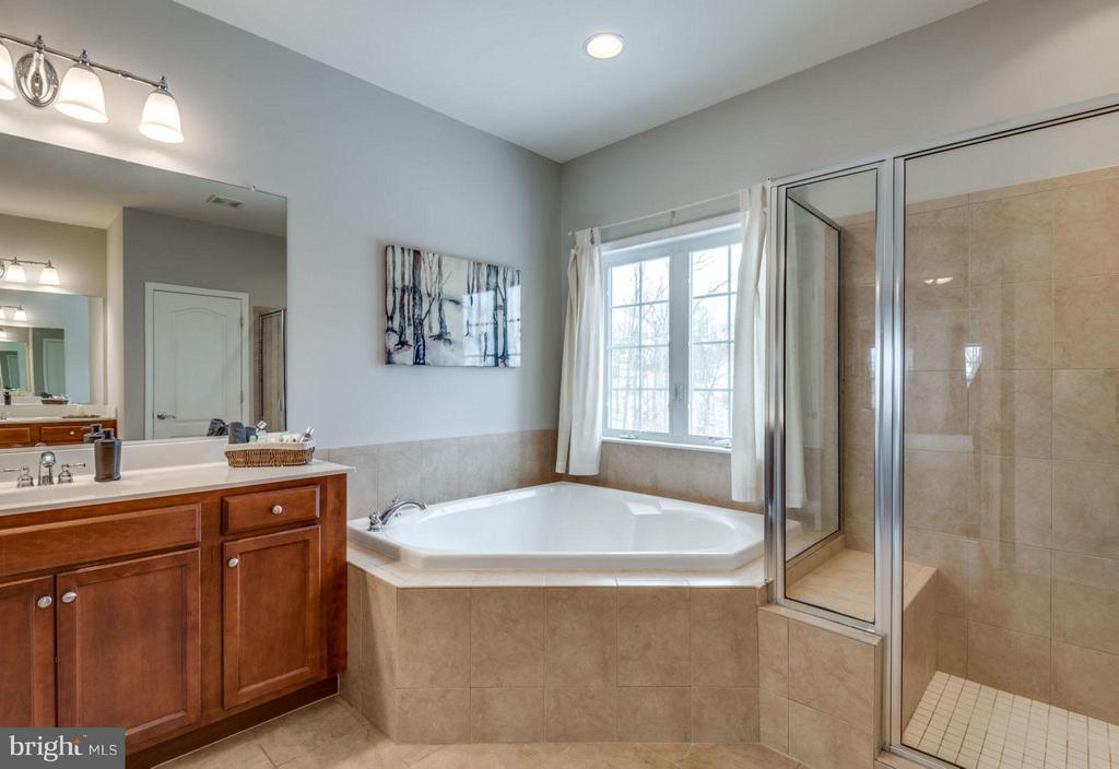 Separate vanities and soaking tub. - 21584 BURNT HICKORY CT, BROADLANDS