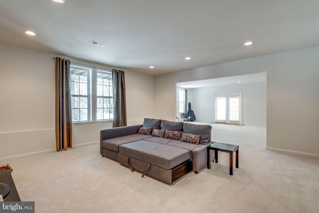 The perfect spot for movie viewing. - 21584 BURNT HICKORY CT, BROADLANDS