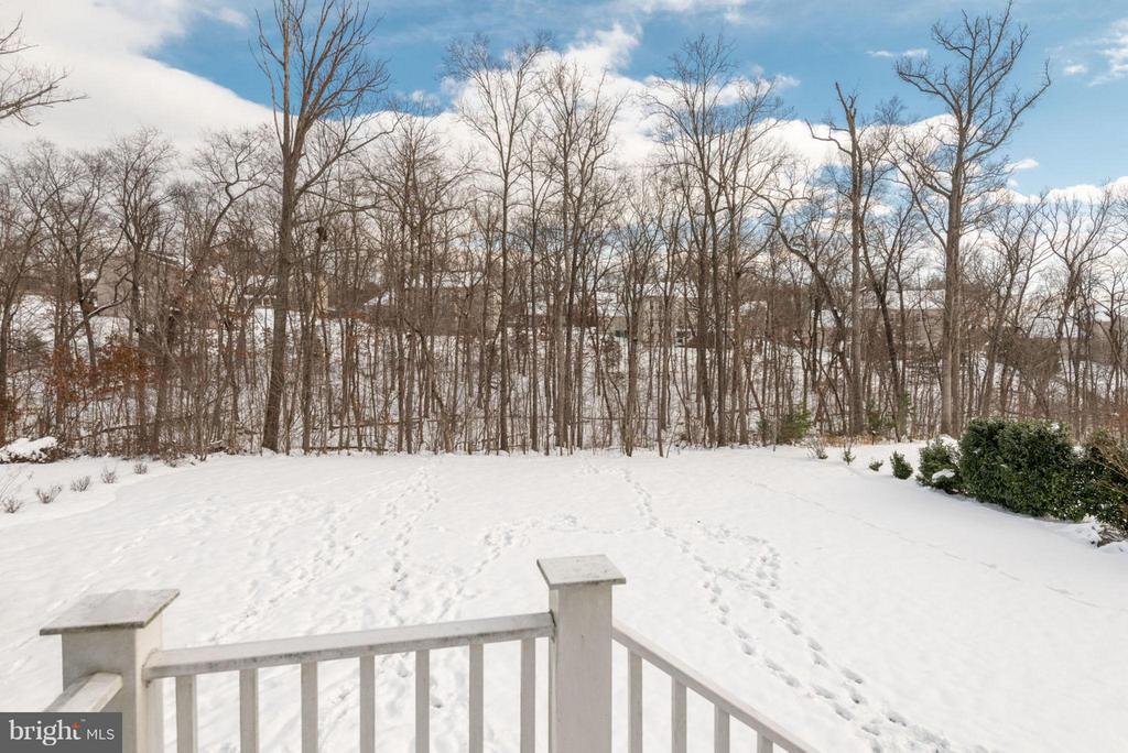 Ample backyard-perfect for a pool and garden. - 21584 BURNT HICKORY CT, BROADLANDS