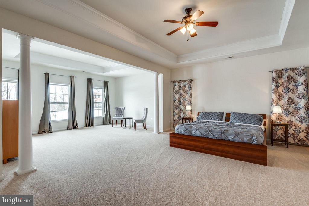 Grand master suite with sitting room. - 21584 BURNT HICKORY CT, BROADLANDS