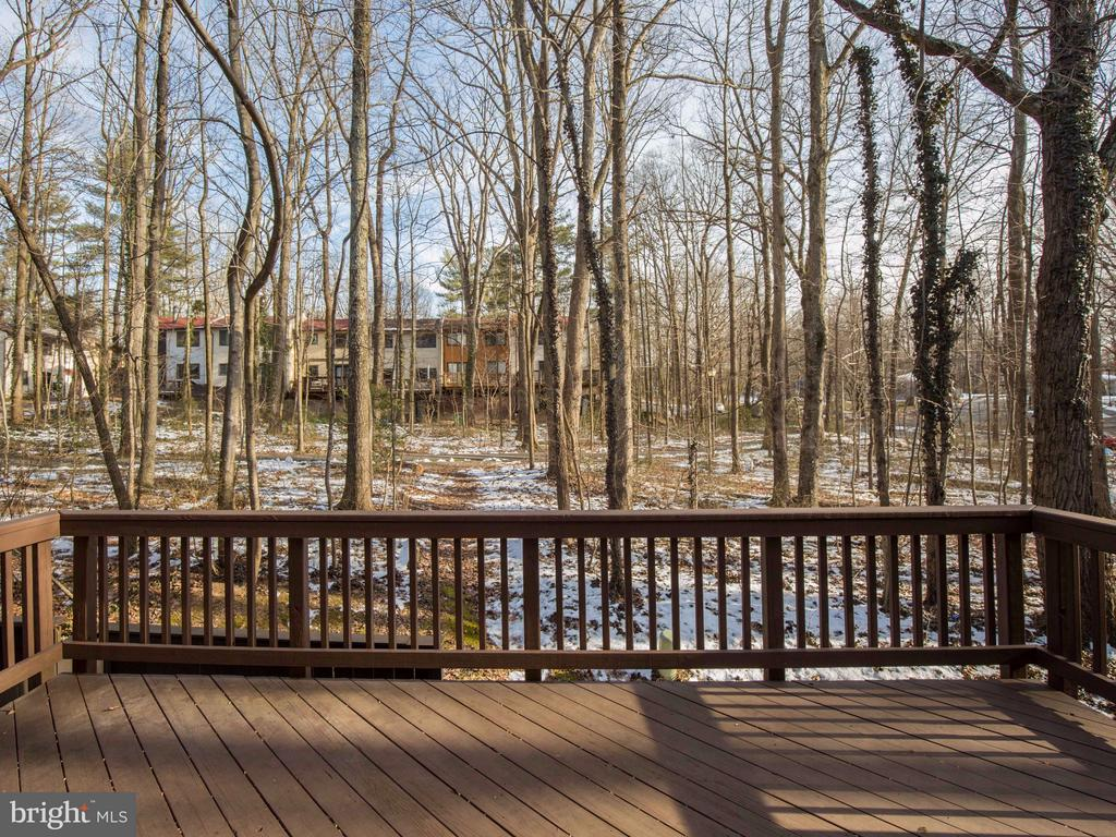 Great view of the open space - 2349 EMERALD HEIGHTS CT, RESTON