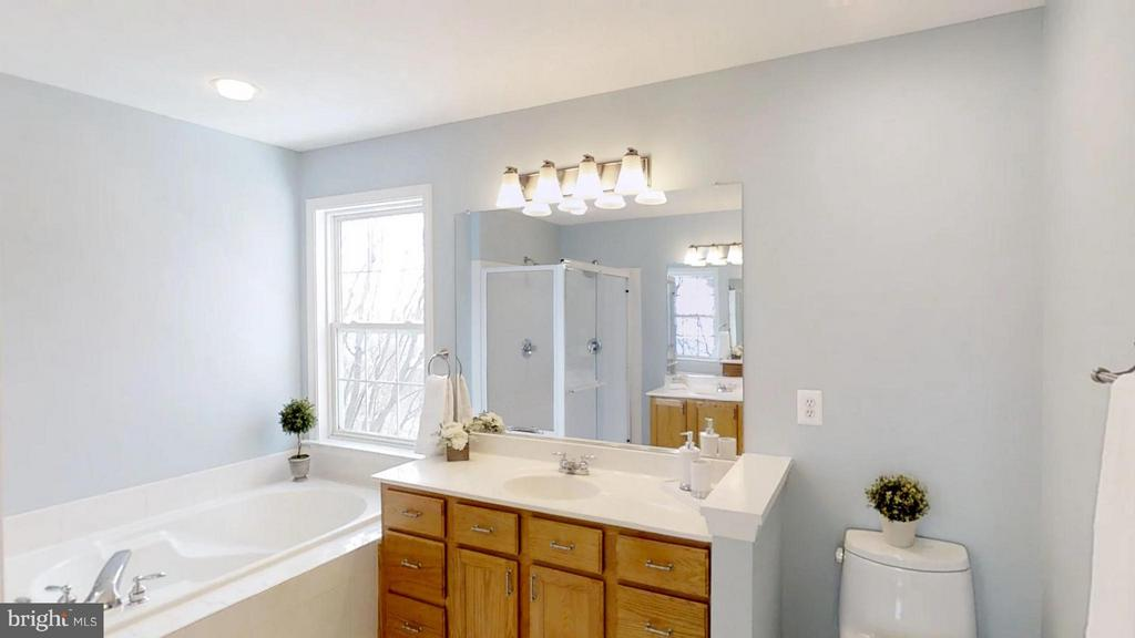 Time For a Hot Bath - 43205 EDGARTOWN ST, CHANTILLY