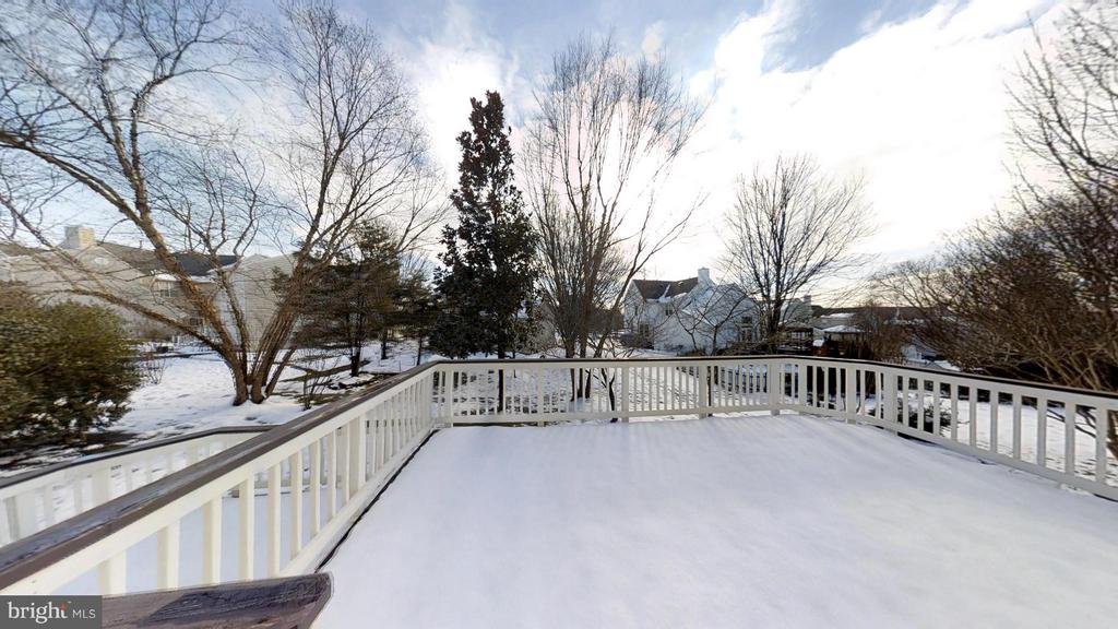 Not Quite the Size Of An Ice Rink - 43205 EDGARTOWN ST, CHANTILLY