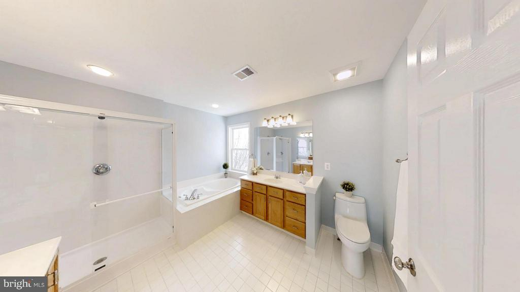 Handsome Master Bath w Separate Tub and Shower - 43205 EDGARTOWN ST, CHANTILLY