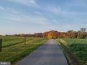 Long driveway yields to a very private setting - 16120 BARNESVILLE RD, BOYDS
