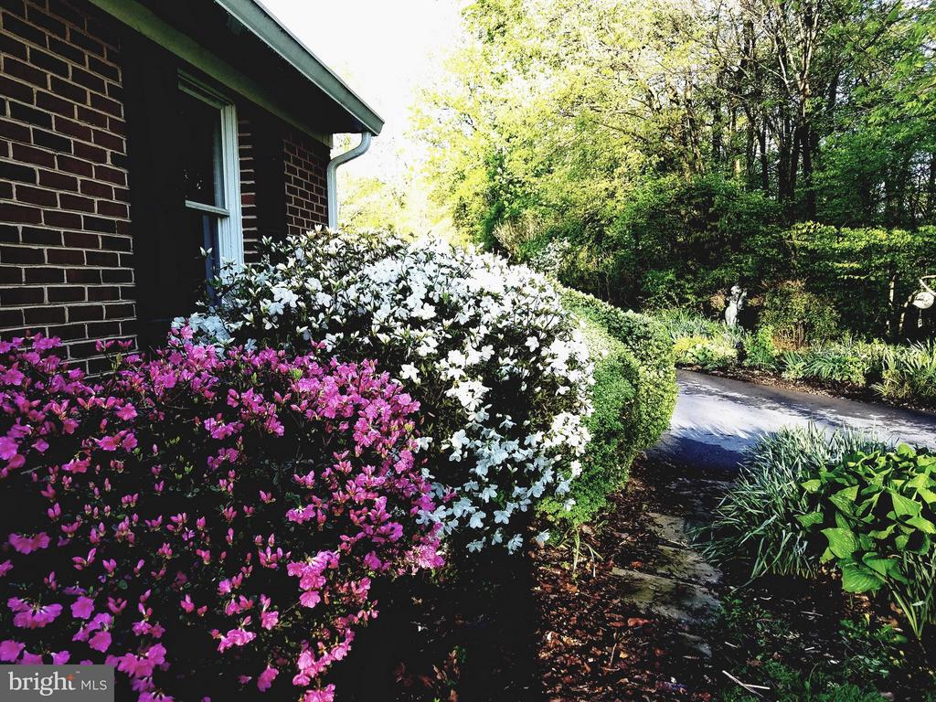 Lots of well maintained landscaping - 16120 BARNESVILLE RD, BOYDS