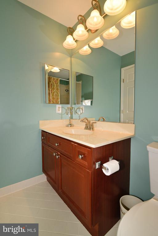 Guest Bathroom 2 - 14405 VIRGINIA CHASE CT, CENTREVILLE