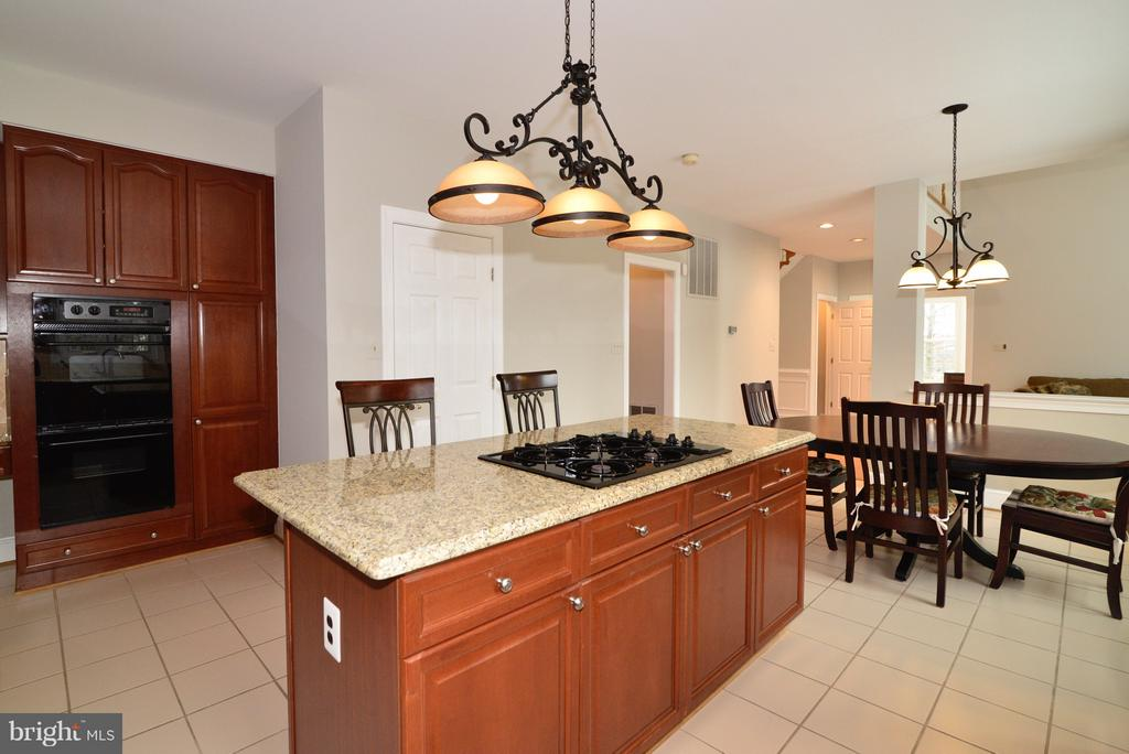 Updated Lighting! - 14405 VIRGINIA CHASE CT, CENTREVILLE