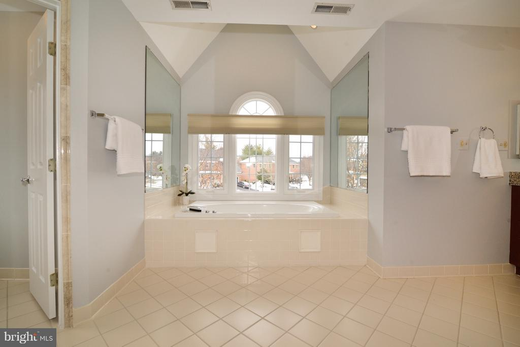 Master En-Suite - 14405 VIRGINIA CHASE CT, CENTREVILLE