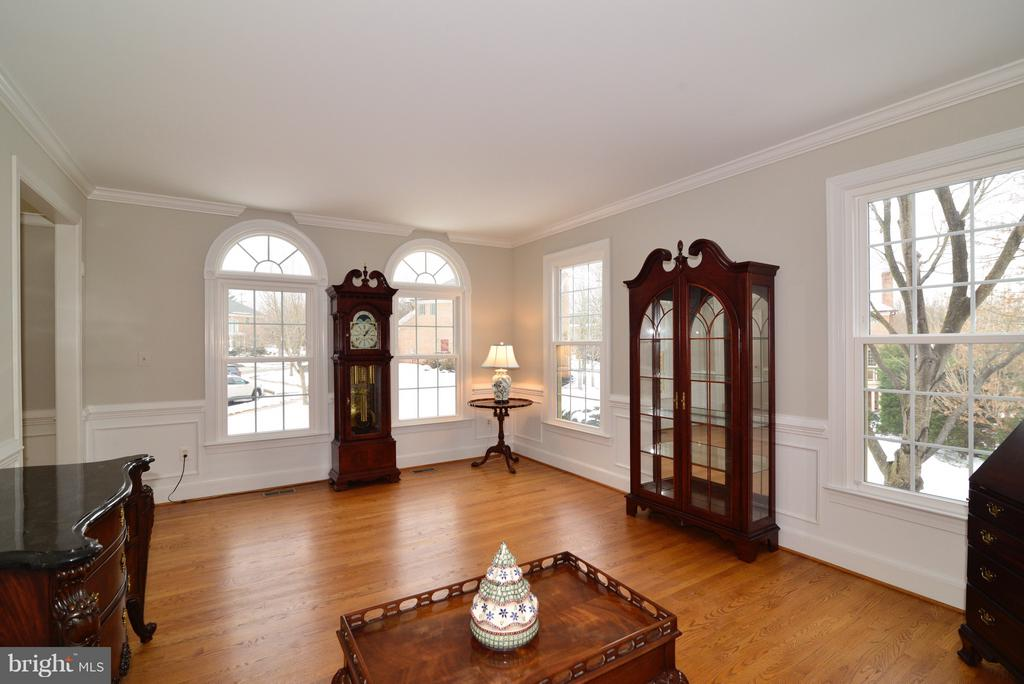 Plenty of Natural Light ! - 14405 VIRGINIA CHASE CT, CENTREVILLE