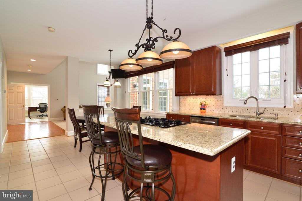 Granite Countertops - 14405 VIRGINIA CHASE CT, CENTREVILLE