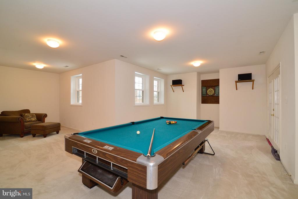 LL Game Room - 14405 VIRGINIA CHASE CT, CENTREVILLE
