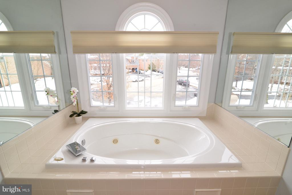 Master Jetted Soaking Tub - 14405 VIRGINIA CHASE CT, CENTREVILLE