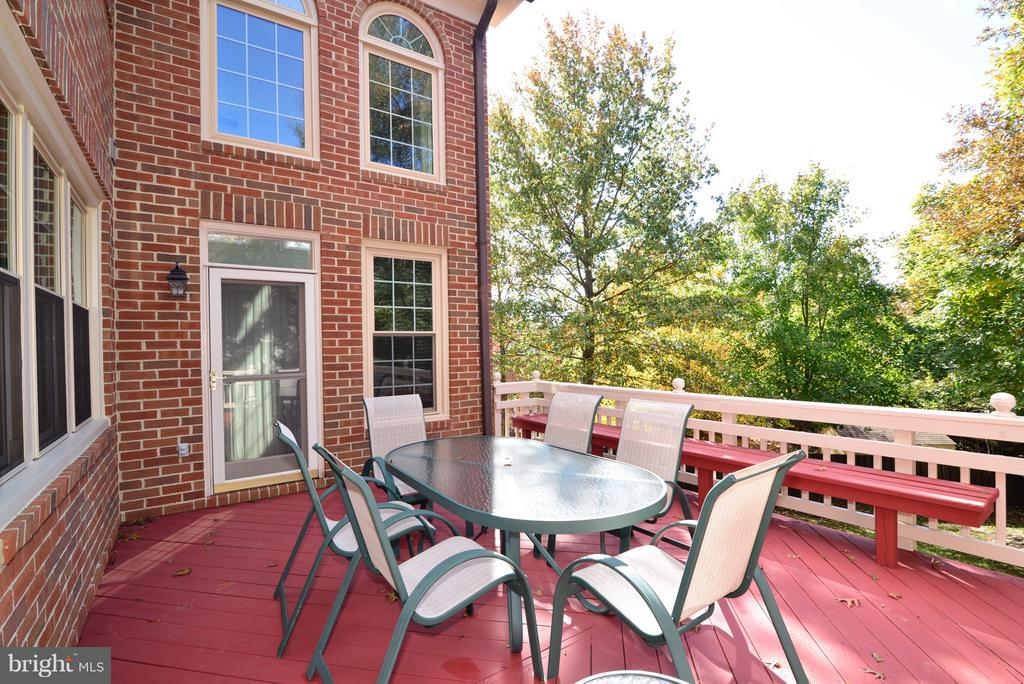 Freshly painted Deck - 14405 VIRGINIA CHASE CT, CENTREVILLE