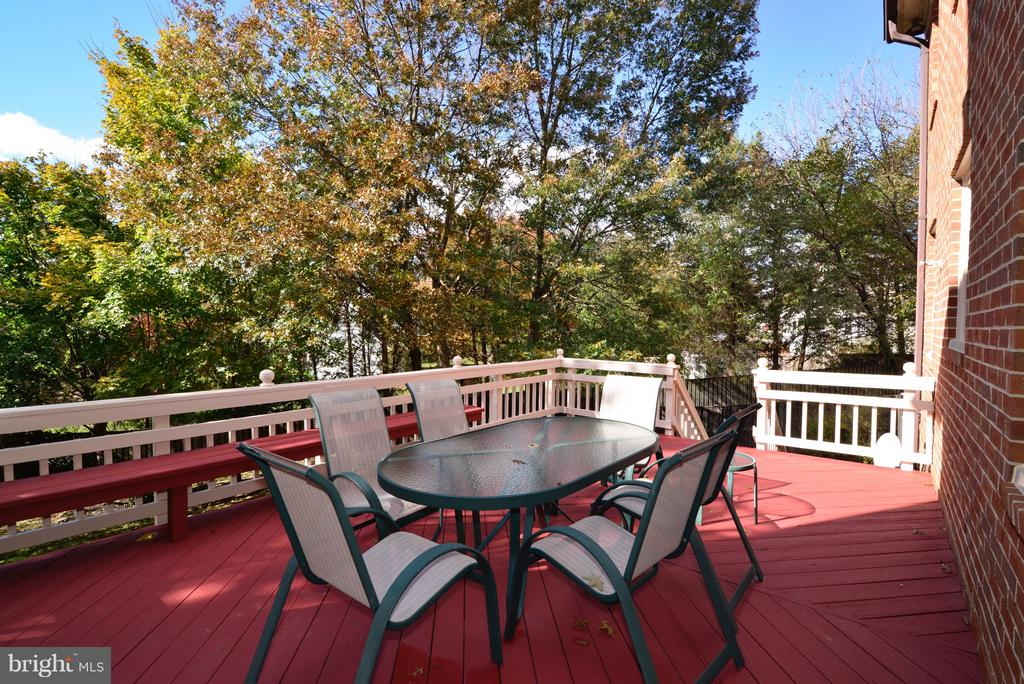 Rear Deck off Family Room - 14405 VIRGINIA CHASE CT, CENTREVILLE