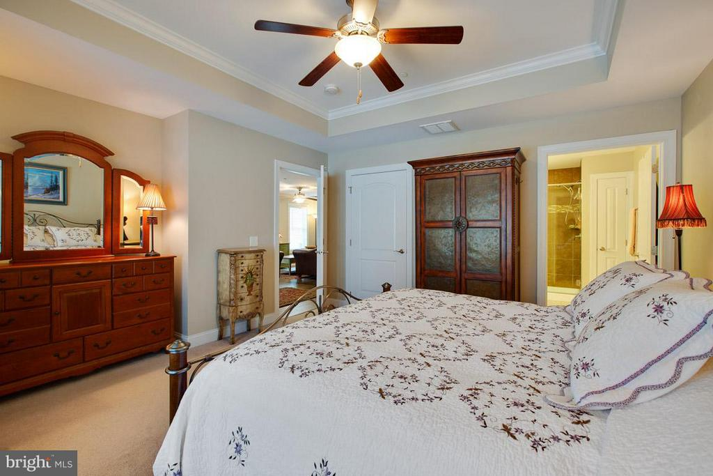 Walk in closet & ensuite bath in Master Bdrm - 9727 COBBLE STONE CT, HAGERSTOWN