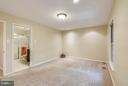 PLUSH NEUTRAL CARPET - 10419 ENGLISHMAN DR #25, ROCKVILLE