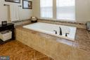 Soaking tub - 16964 TAKEAWAY LN, DUMFRIES