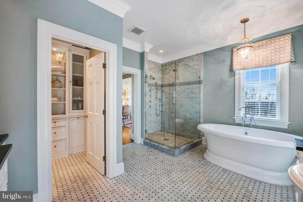 Glass enclosed shower & soaking tub - 1208 SOUTHBREEZE LN, ANNAPOLIS