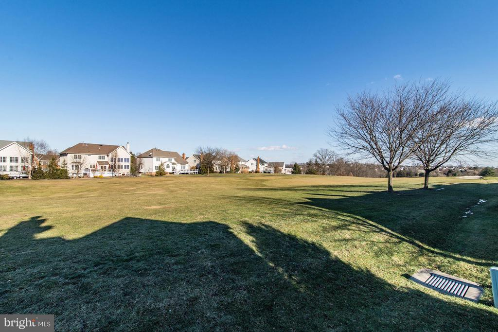 Golf Course VIews - 43226 BALTUSROL TER, ASHBURN