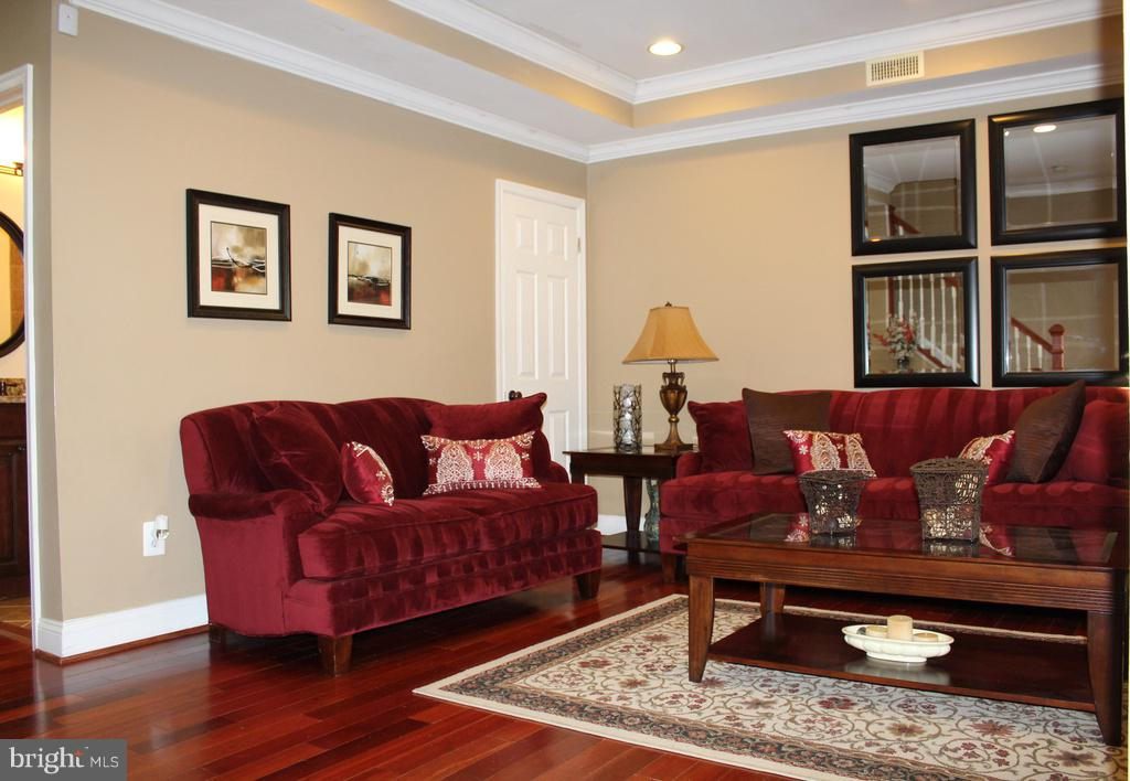 Living Room double crowned & recessed lighting! - 1724 BAY ST SE, WASHINGTON