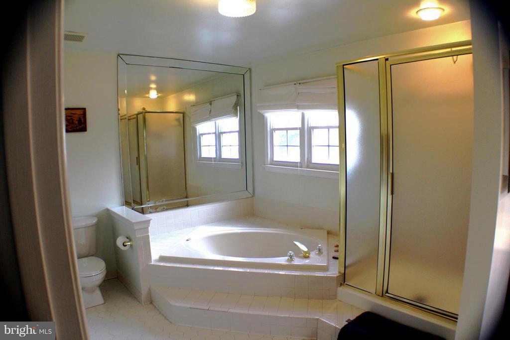 Master Bath - 6606 FORSYTHIA ST, SPRINGFIELD