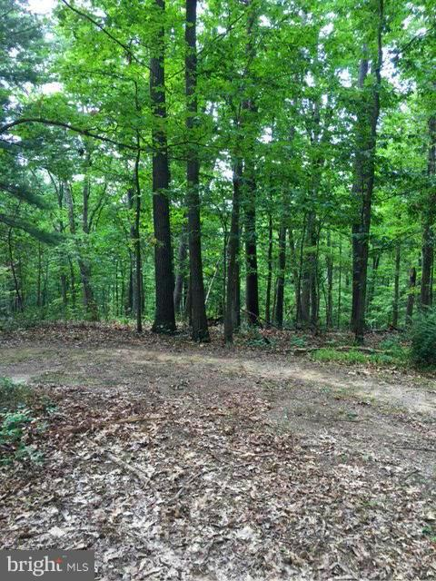 Land for Sale at 0 Western Ct Berkeley Springs, West Virginia 25411 United States