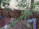 Back yard - 14621 CHEVERLY CT, CENTREVILLE