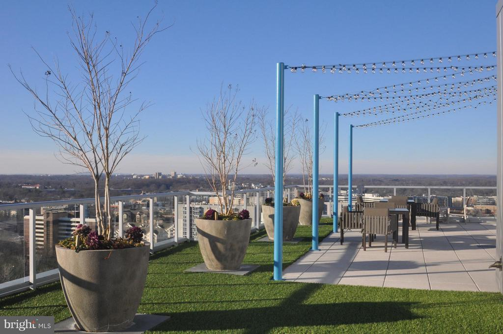 Community Rooftop Terrace - 930 ROSE AVE #1905, NORTH BETHESDA