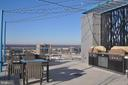 Community Rooftop Terrace - Gas Grills - 930 ROSE AVE #1905, NORTH BETHESDA