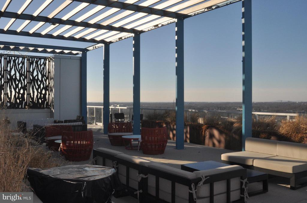 Community Rooftop with Amazing Views - 930 ROSE AVE #1905, NORTH BETHESDA