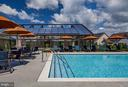 Community  Outdoor Pool - 6014 TROTTERS POINT LN, GAINESVILLE