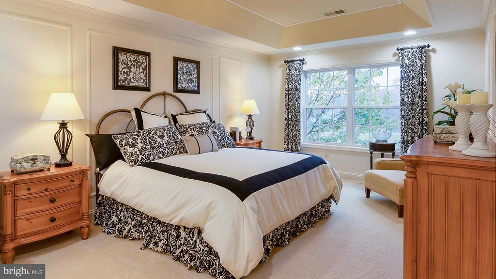 Large owner's bedroom with tray ceiling - 101 FEATHERDALE CIR, FAYETTEVILLE