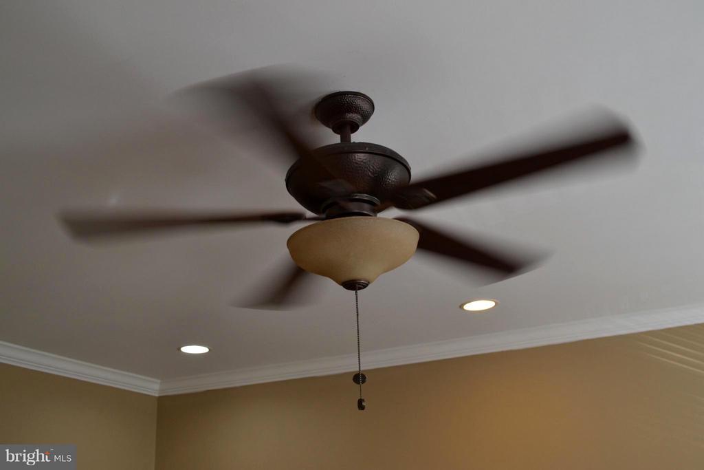 Master Bedroom, ceiling fan. - 1724 BAY ST SE, WASHINGTON