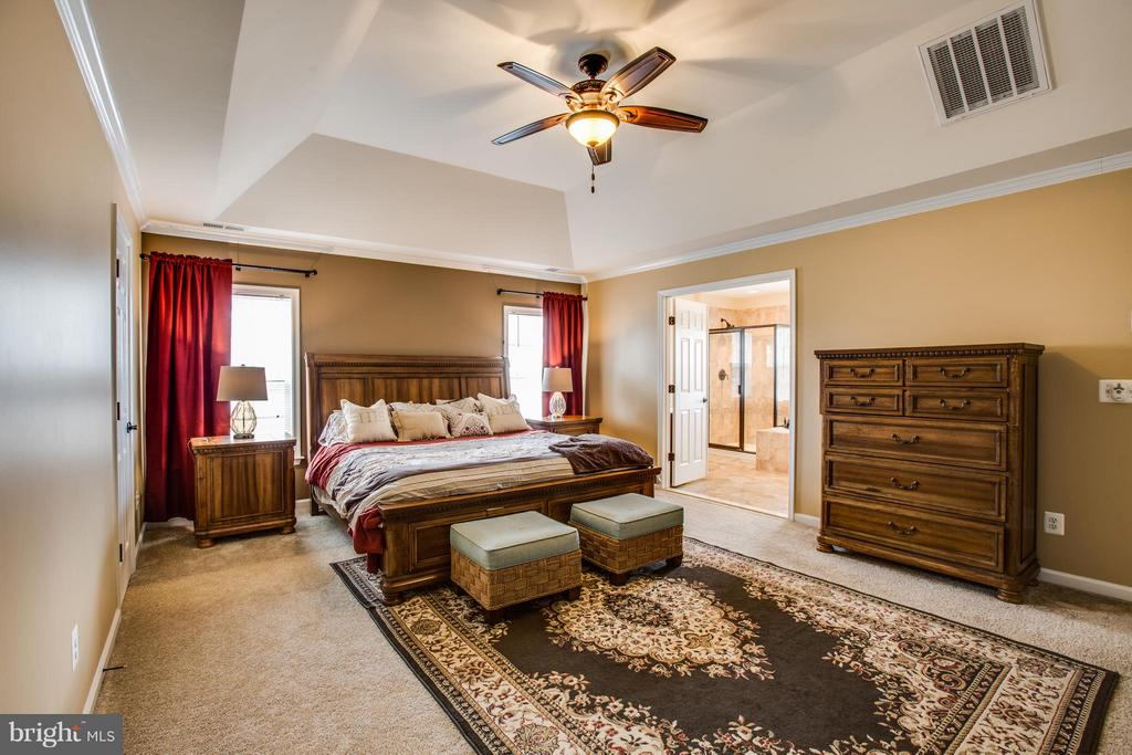 Spacious Master Bedroom with Tray Ceiling - 1003 JULIAS PL, FREDERICKSBURG