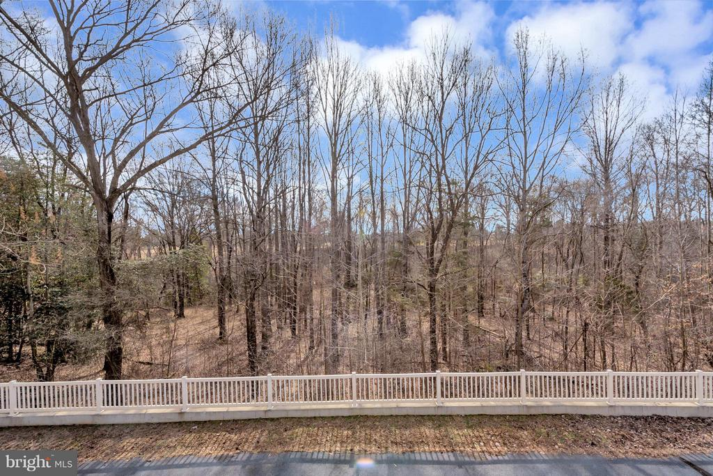 Nice wooded barrier between home and 5th green! - 11227 N CLUB DR, FREDERICKSBURG