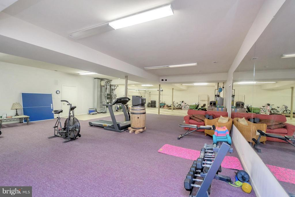 Lower level exercise room - 11227 N CLUB DR, FREDERICKSBURG