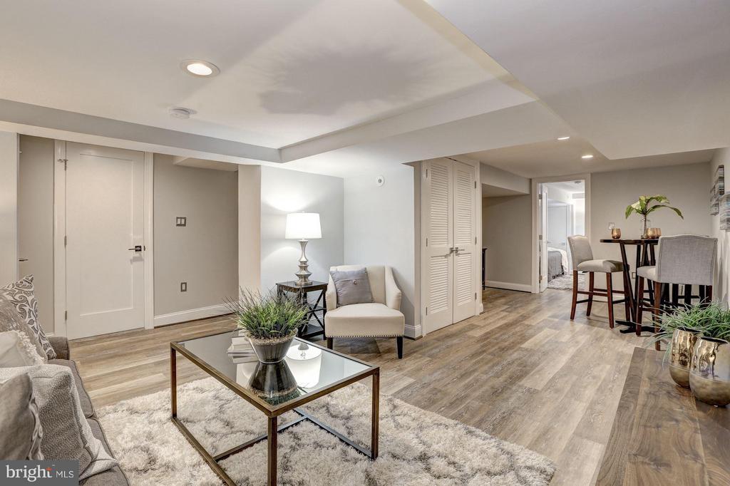 Lower Level - Recreation Room - 1701 HOBAN RD NW, WASHINGTON