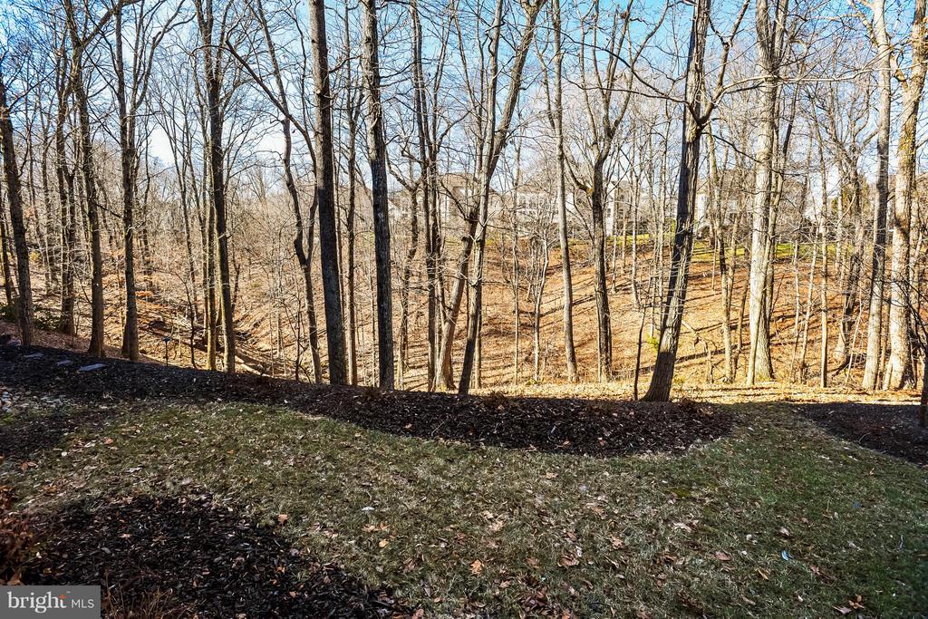 Wooded View - 18263 MULLFIELD VILLAGE TER, LEESBURG