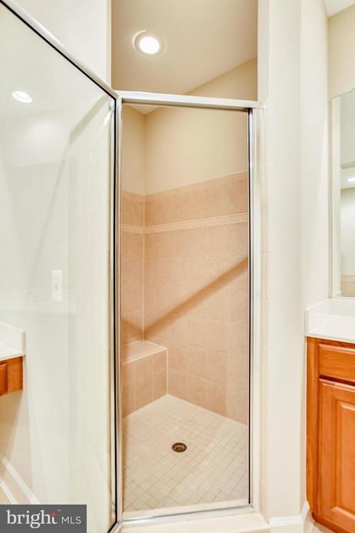 Master Bath Shower - 18263 MULLFIELD VILLAGE TER, LEESBURG