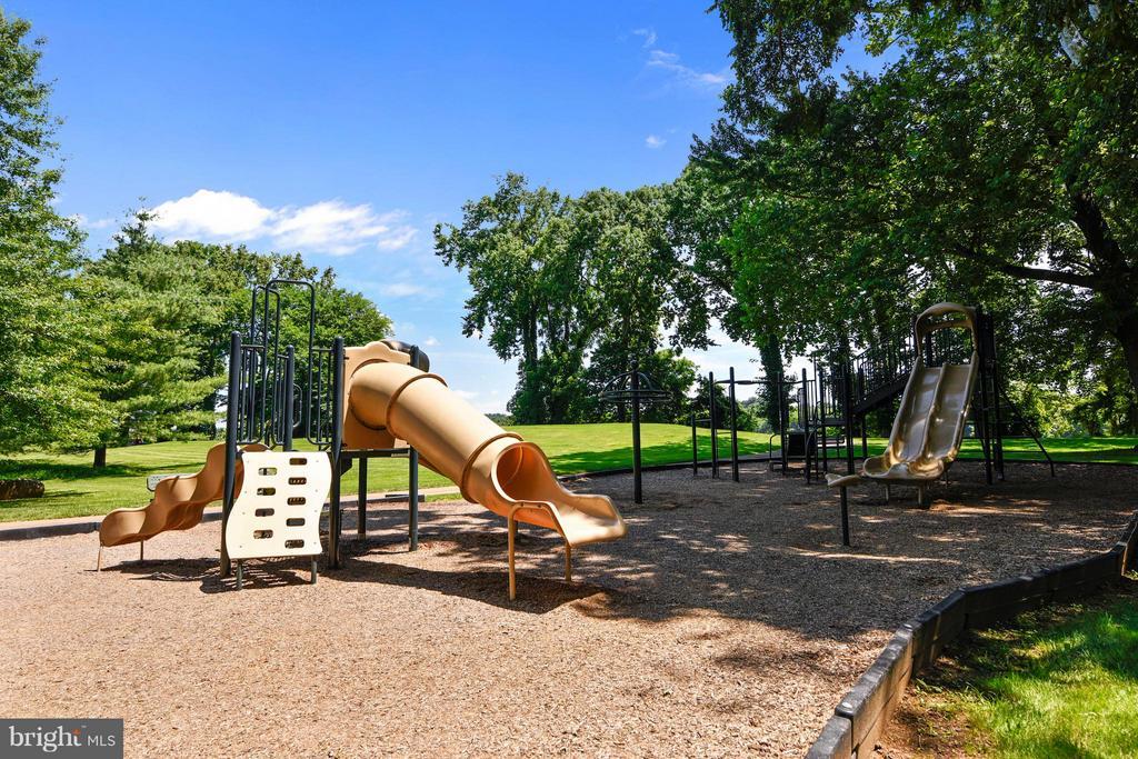 River Creek Community Confluence Park - 18263 MULLFIELD VILLAGE TER, LEESBURG
