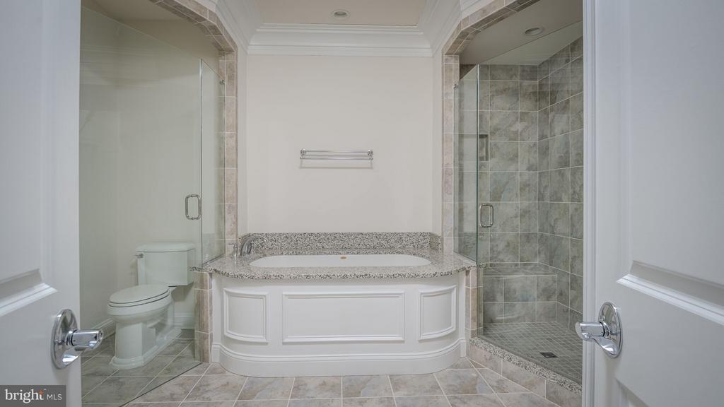 Master Bath Room - 10851 SYMPHONY PARK DR, NORTH BETHESDA