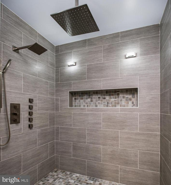 Spa like full bath with HUGE luxe shower. - 41139 WHITE CEDAR CT, ALDIE