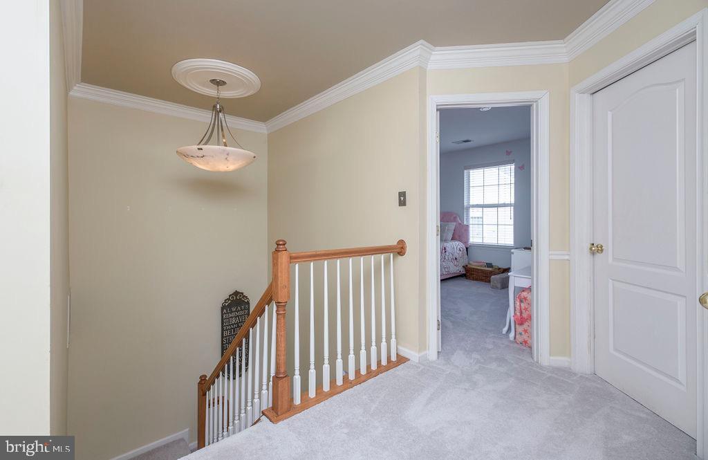 Upper level hallway - 13375 COLCHESTER FERRY PL, WOODBRIDGE