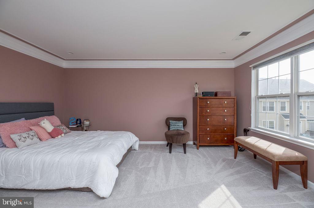 Master Bedroom - 13375 COLCHESTER FERRY PL, WOODBRIDGE